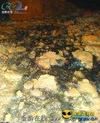 神奇!德江发现神秘石洞流出五种颜色液体