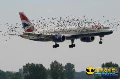 飞机惊现恐怖一幕 大气层竟藏外星人?