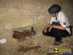 埃及沙漠地下墓穴发现800万条木乃伊狗
