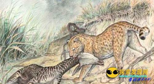 盘点非洲至今还存在的几大巨兽