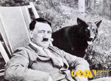 灵验的玛雅预言:玛雅人预言希特勒