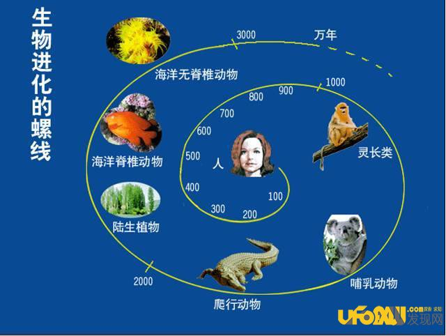 生命起源:所有物种都是已经设计好的程序?