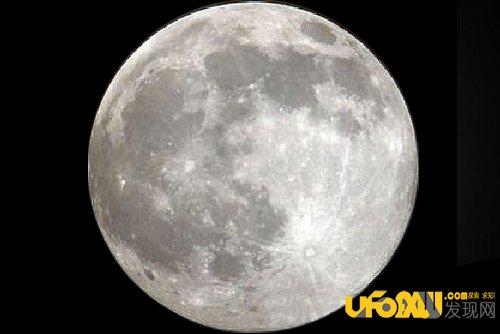 双狼对月亮嚎叫壁纸
