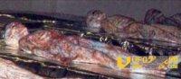 51区保存的外星人尸体:是个两牺人