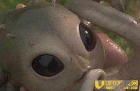 外星人宝宝降临墨西哥农场 外星