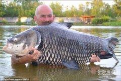 男子捕获超大鲤鱼重127斤 破世界纪录