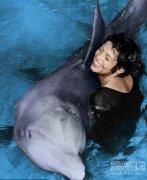 海豚也懂得爱情 竟然为了她自杀