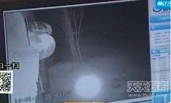 神秘光球惊现村民养猪院子 疑为UFO