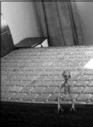宇宙奥秘租房客随手拍照片 意外拍到外星人