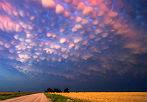 美国天空出现罕见乳房云